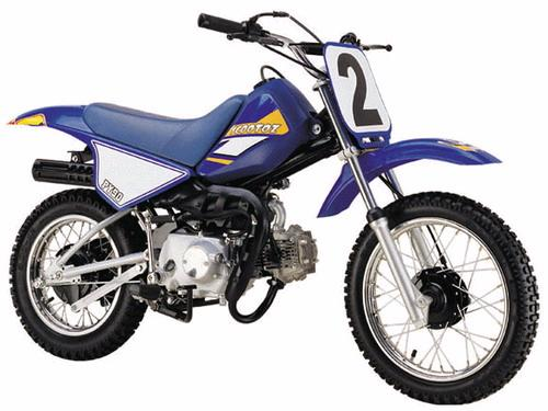 Pee Wee PY 90cc Mini Bike